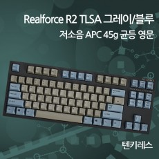 Realforce R2 TLSA 그레이/블루 저소음 APC 45g 균등 영문(텐키레스)