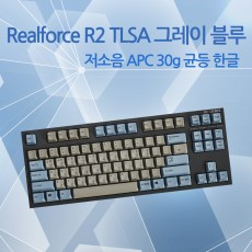 Realforce R2 TLSA 그레이/블루 저소음 APC 30g 균등 한글(텐키레스_NEW)